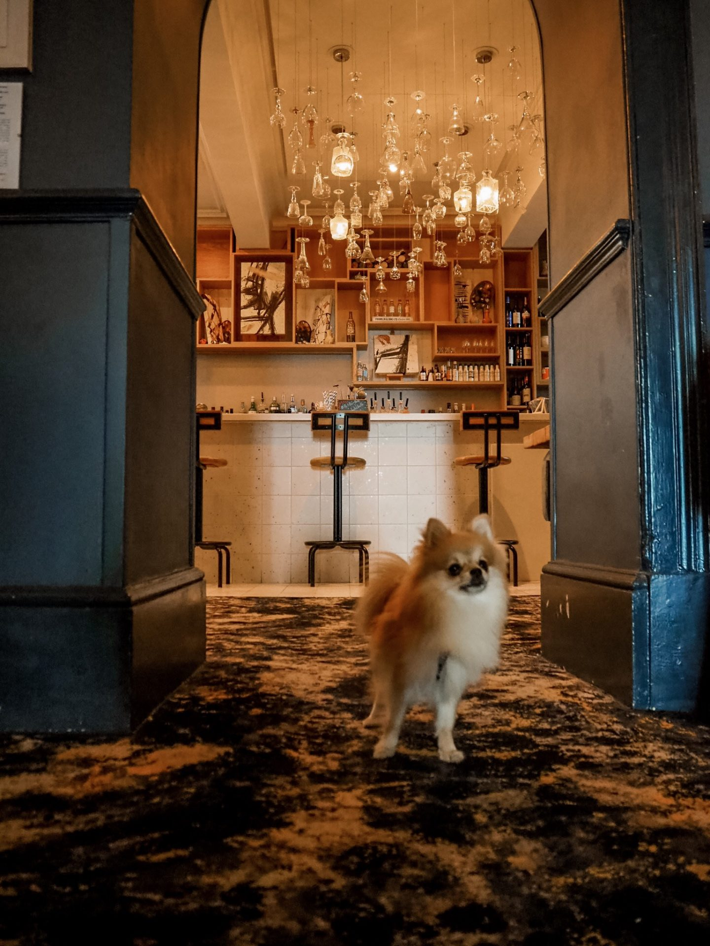 Dog friendly Abbey hotel bath review