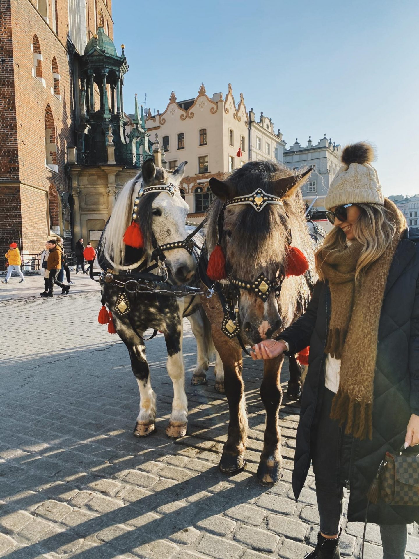 Horse and carriage ride Krakow