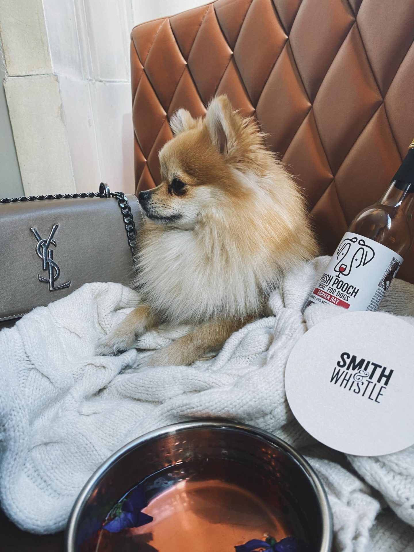 Smith & Whistle dog friendly bar