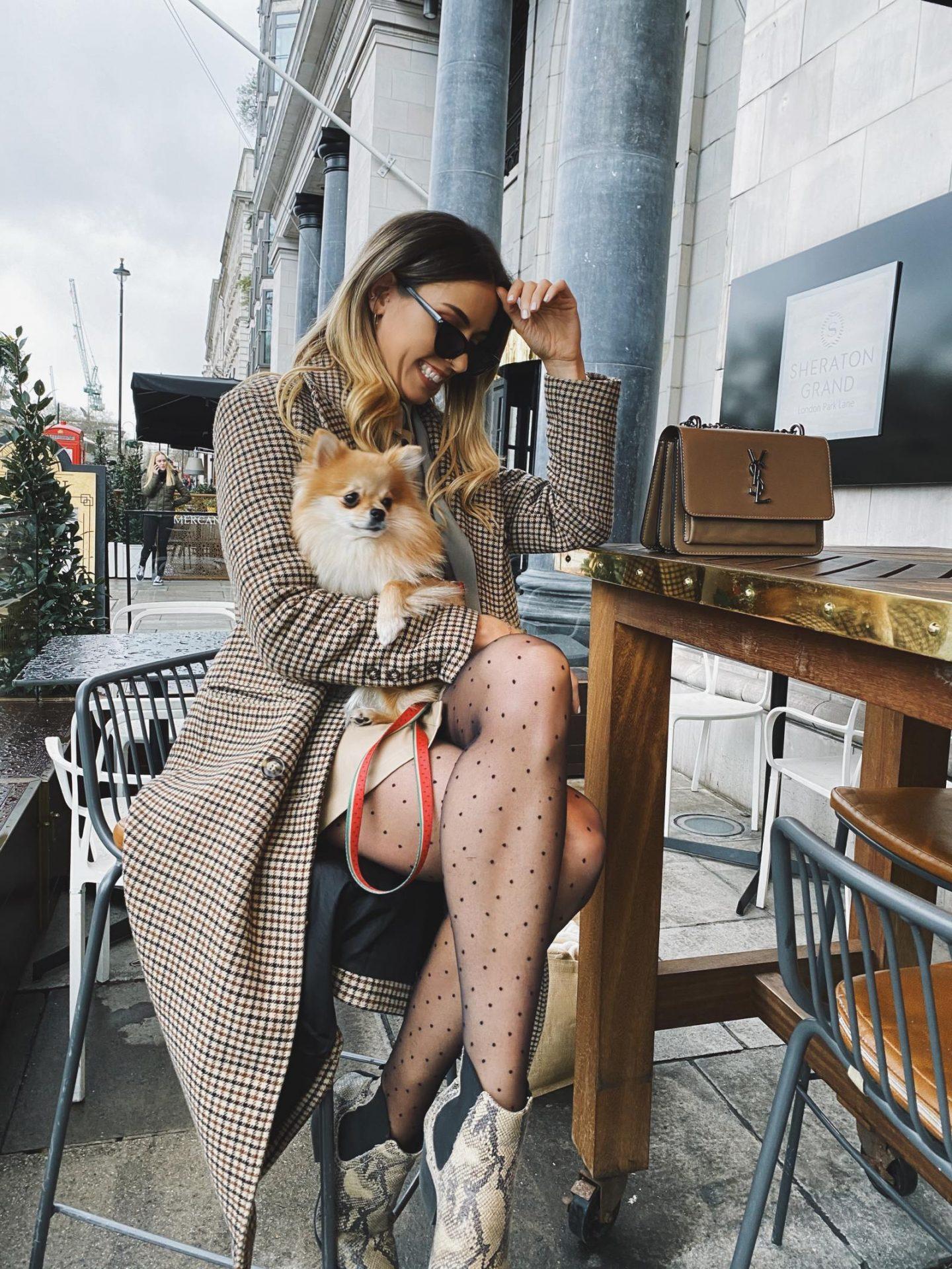 Dog friendly Smith & Whistle London